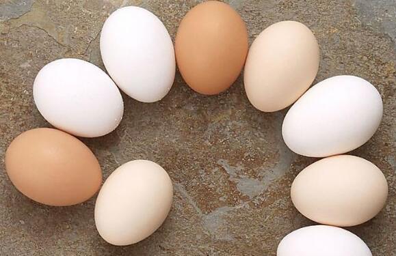 生精的食物有哪些?备孕食物排行榜推荐一、鸡蛋