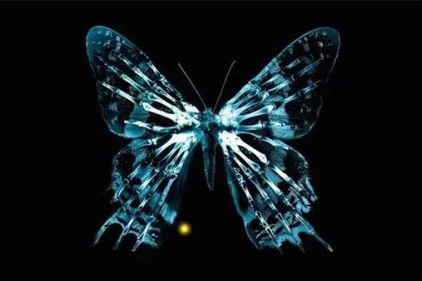 十大高智商烧脑电影排行榜第三名《蝴蝶效应》