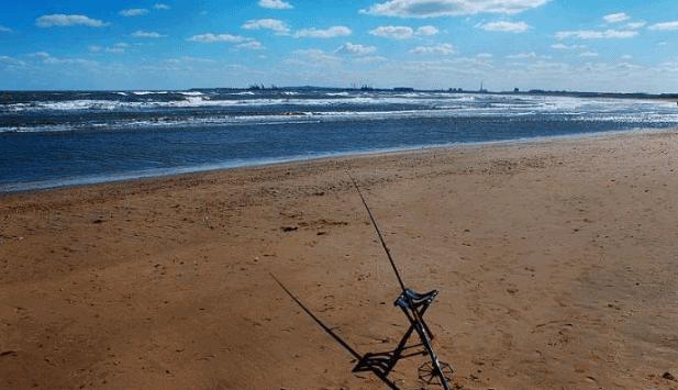 中国四大渔场:四大渔场开发污染严重已名存实亡