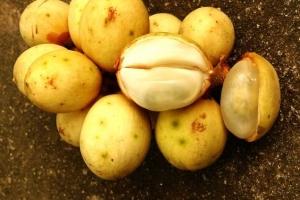 世界十大罕见水果:神秘果属国宝(周恩来总理引进)