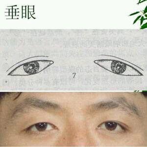 眼型排行-