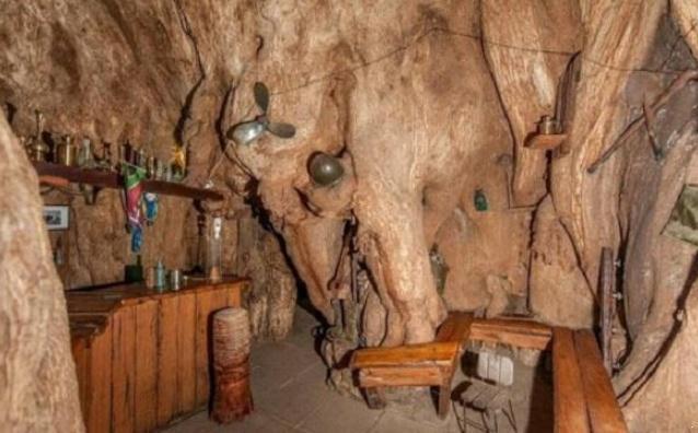 猴面包树酒吧