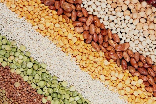 十大胶原蛋白食物排行榜8、豆类