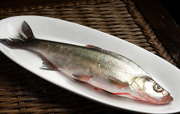 十大胶原蛋白食物排行榜3、鱼类