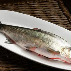 哪些食物含胶原蛋白最多?十大胶原蛋白食物排行榜