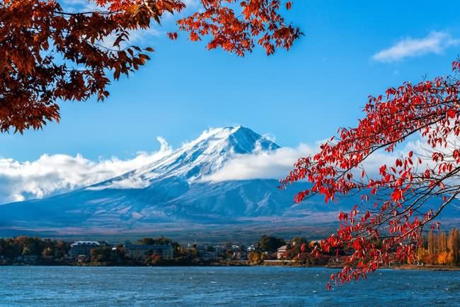 中国留学生最爱去的十大国家排名四、日本